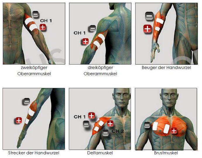 EMS Positionen Arme Schultern