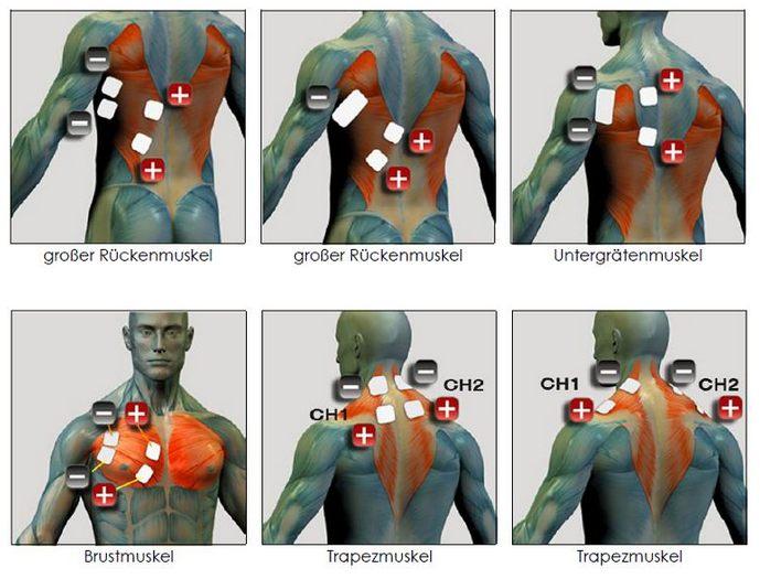EMS Positionen Rücken, Brust Nacken