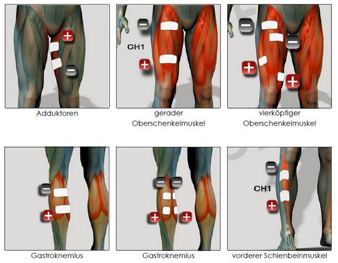 EMS Positionen Beine - Waden