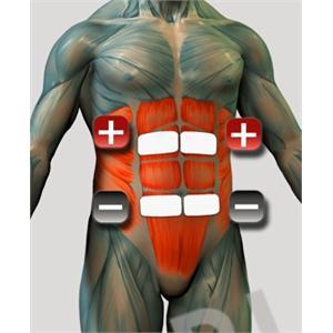 Elektrodenplatzierung für EMS Bauchmuskulatur