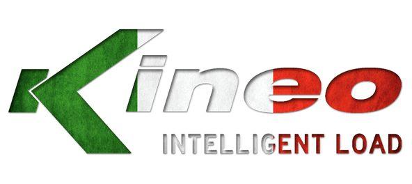 Kineosystem Rehatraining und Leistungssport
